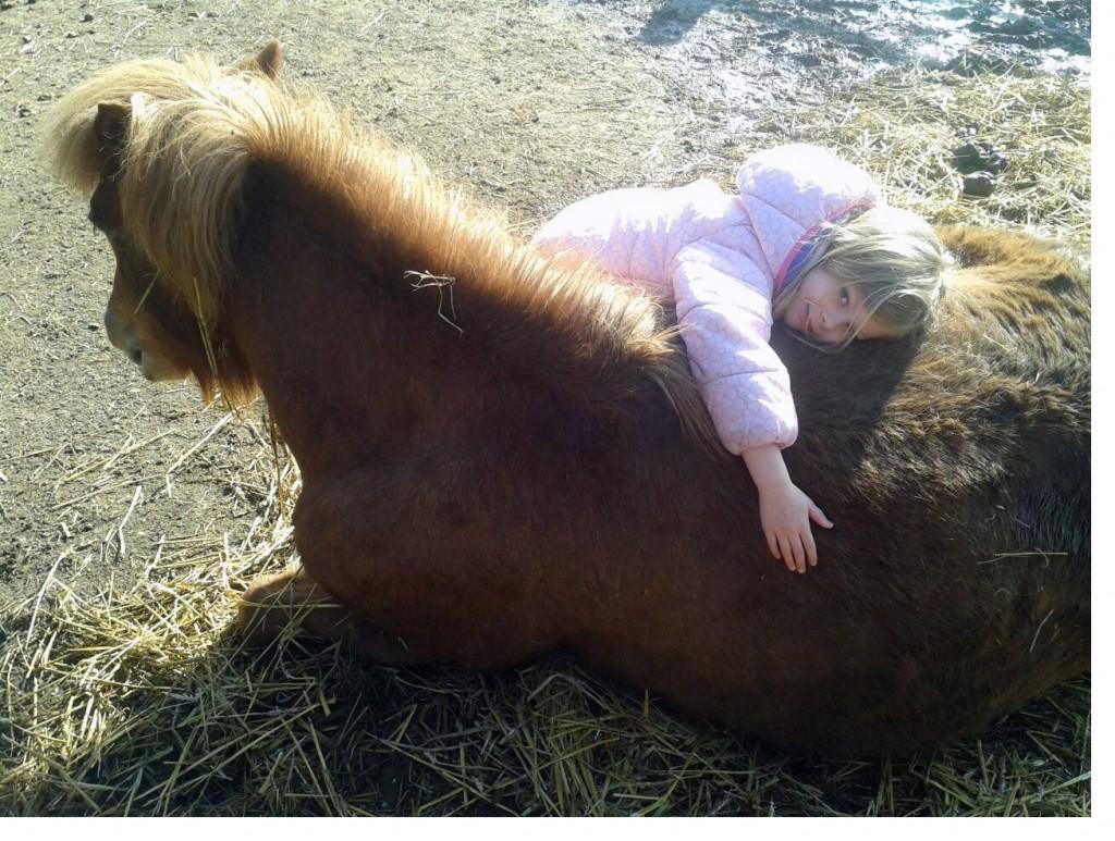 Ponystunde
