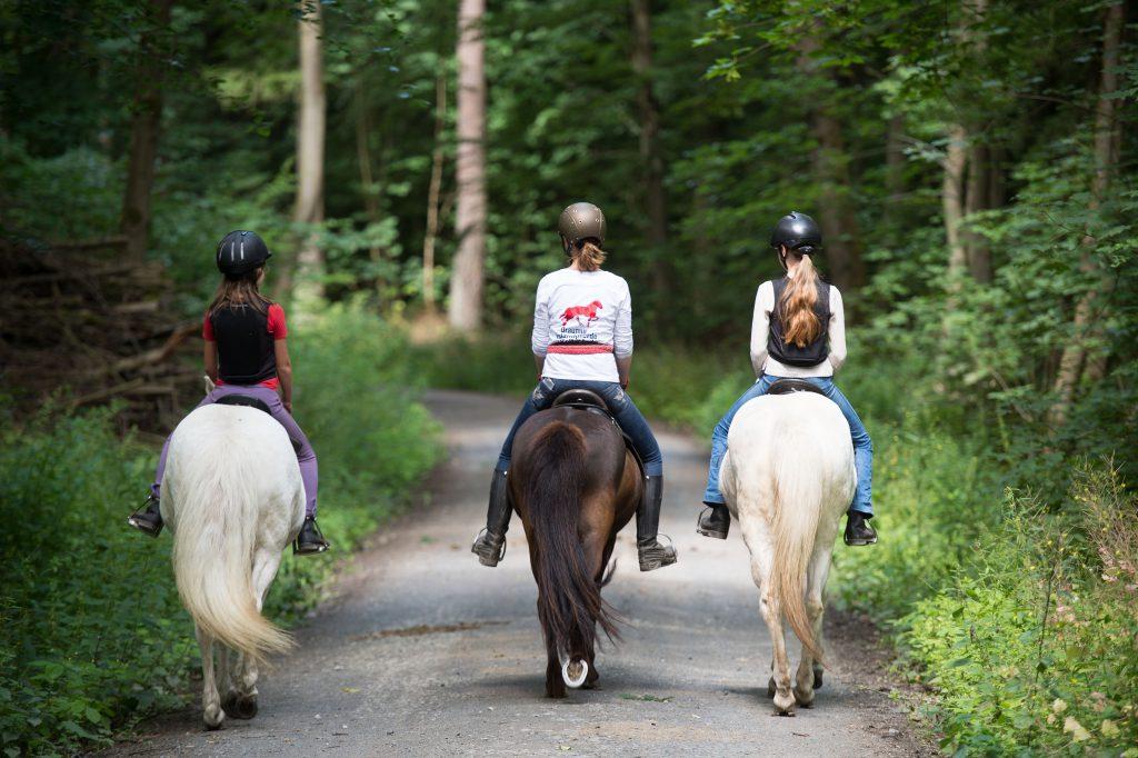 Feature im Rahmen des Reitunterrichts in der Draumur-Islandpferde-Reitschule von Ilka Peter in Rosbach vor der Höhe/ Hessen am Samstag, 09.07.2016